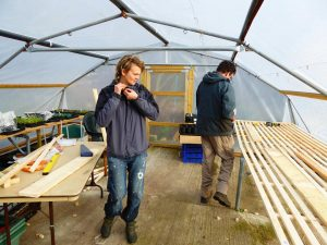 polytunnel workers